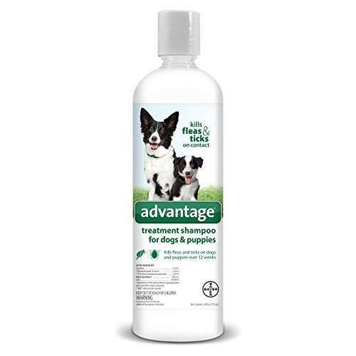 Bayer Animal Health Advantage Shampoo Flea and Tick Treatment