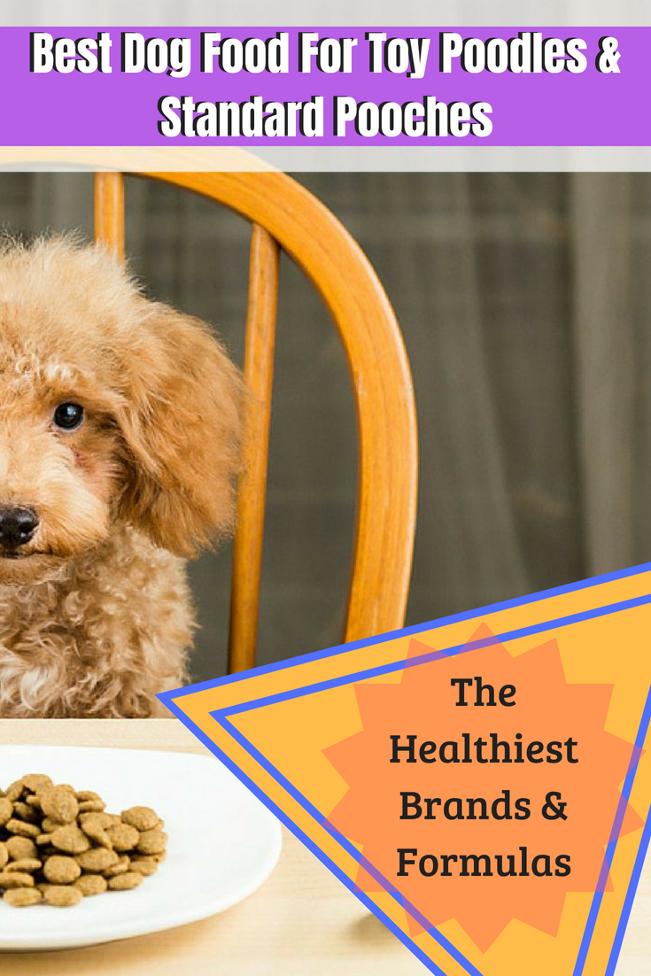 Best Dog Food For Toy Poodles Standard Pooches 2018