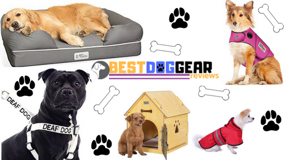 bestdoggear.reviews primary pic